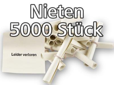 Leider Verloren  Weiß oder Bunt 100 oder 500 Stück Tombola Röllchenlose Nieten